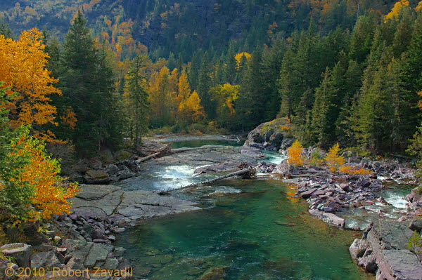 Autumn on McDonald Creek in Glacier National Park