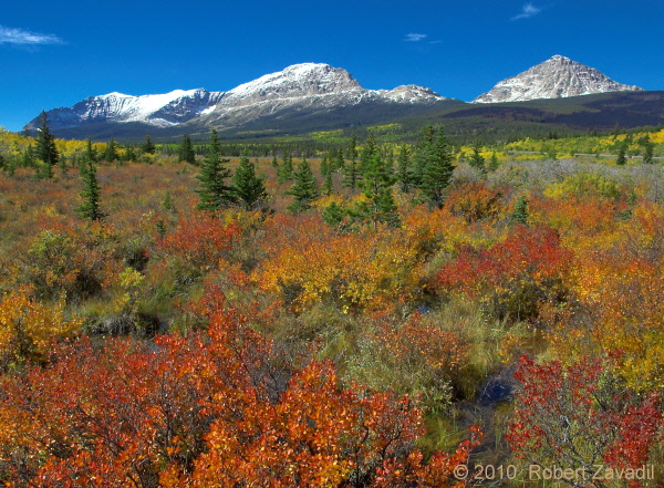 Changing Seasons in Glacier National Park