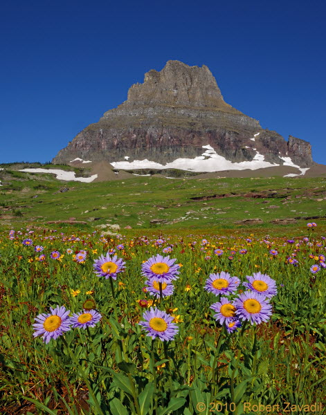 Mount Clements in Glacier National Park