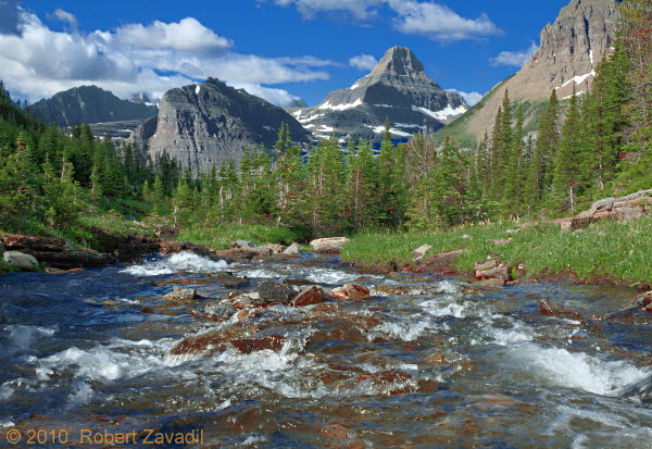 Photo of Mountain Summer in Glacier National Park