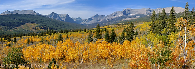 Photo of Cutbank Autumn in Glacier National Park