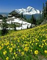 Photo of Spring at Granite Park Chalet in Glacier National Park